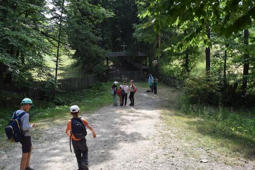 Intrarea in manastirea Poiana Marului