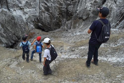 Cetasii intr-o dolina de sare in nordul Buzaului